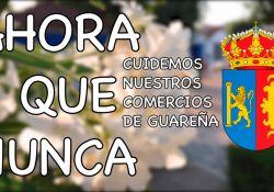 'Ahora + Que Nunca. Compra y Consume en Guareña'. 02