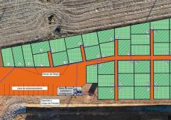 Segunda Convocatoria para la Cesión y Uso de Huertos Ecológicos Municipales